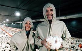 Conheça os avicultores Andrei e Raquel Lorenzet